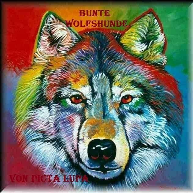 Logo_BunteWolfshundePictaLupa