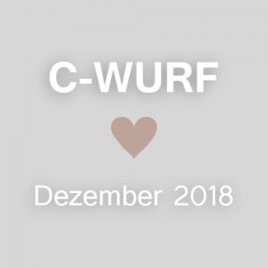 C-WURF<br>geplant für Dezember 2018